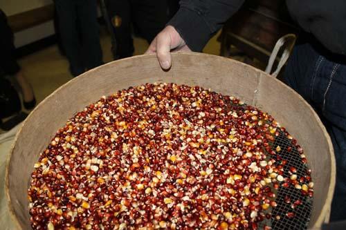maïs population astarac